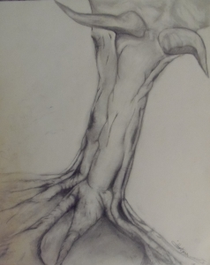 Tree trunk study