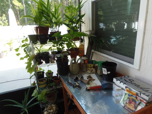 Potting bench with rack
